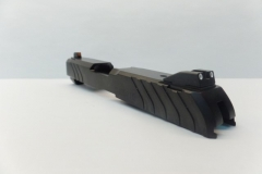 Ruger LCP Custom II