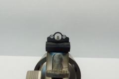 S&W w/ Ghost Ring Rear Sight